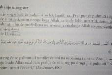 Kada se puhne u rog ostat će oni koje bude Allah odabrao, ko su oni?