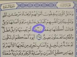 Kako postupiti kada naiđemo na znak u Kur'anu koji nema u medinskoj štampi?