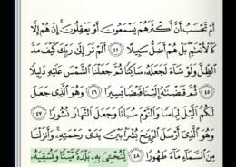 Kako se čita ajet 49 u suri Al-Furkan?