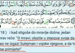 Kako su mravi znali da dolazi Sulejmanova vojska i da se trebaju skloniti?